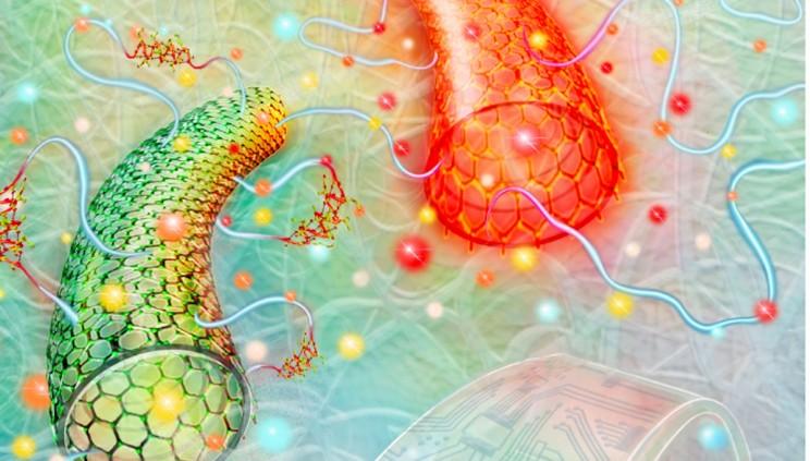 Silk And Nanotubes Make Flexible Electronics