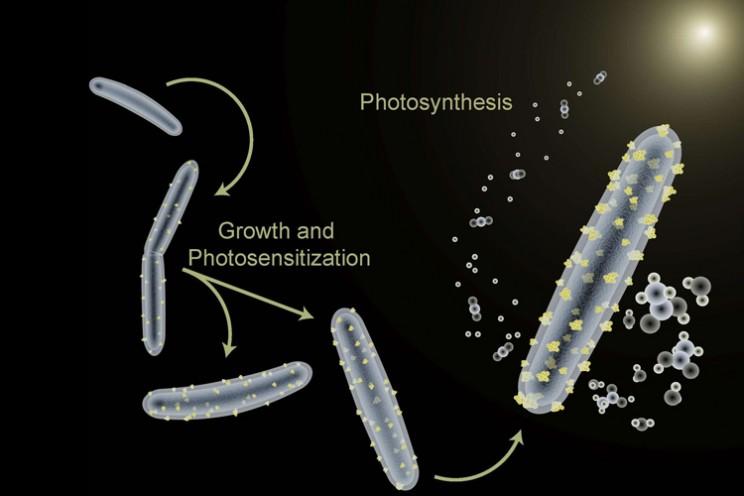 UC Berkeley spacesuit suit hybrid bacteria microbe