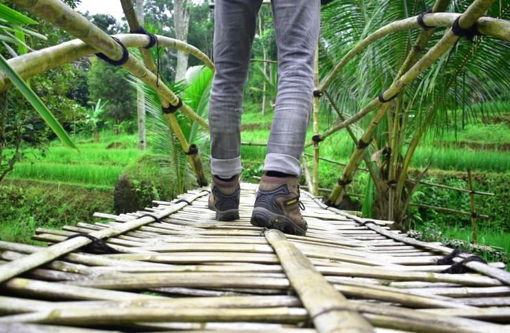 Bamboo can be used to make ultra strong bridges and roads