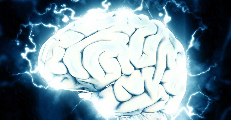 Researchers May Have Found the Key to Engineering Electronic Brains
