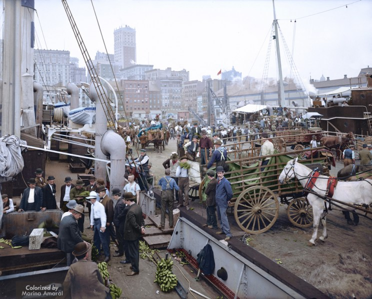 Banana Docks, New York, Ca. 1890 - 1910.
