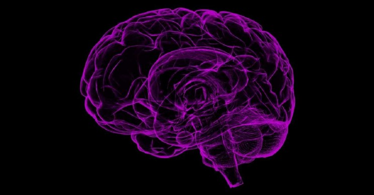 Discovery of How Brain Encodes Speech May Give Voice to The Disabled