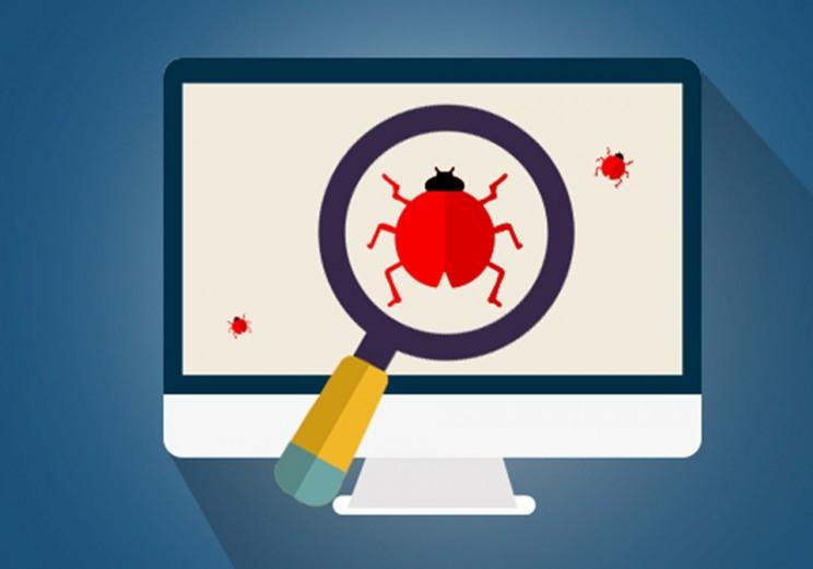 computer bug found