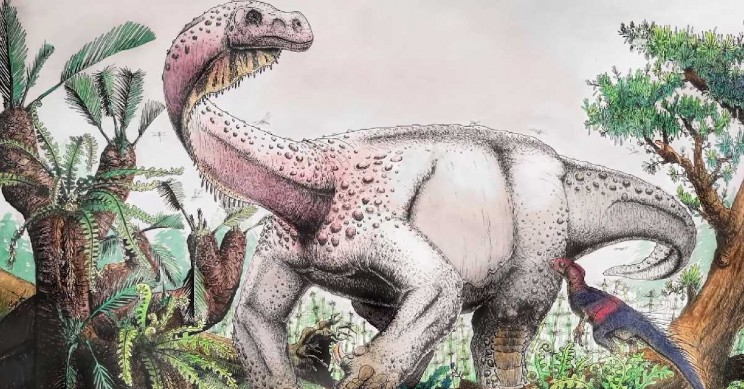 Largest-Ever Jurassic Era Dinosaur Unearthed