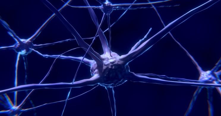 New Study Explains Why So Many Alzheimer's Clinical Trials Failed