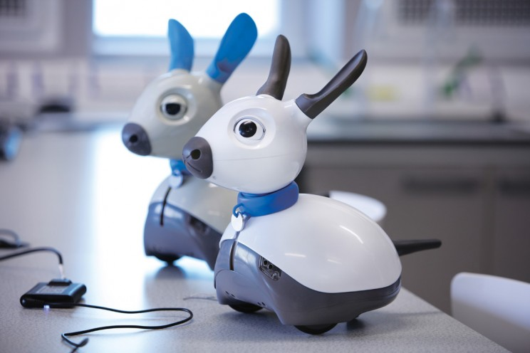 This Cute Robot Dog Will Actually Pass Out If Your Feet Stink