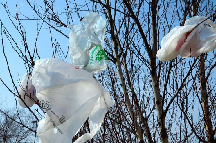 Using Plastic Bags in Kenya Could Lead to Jail Time, Huge Fines