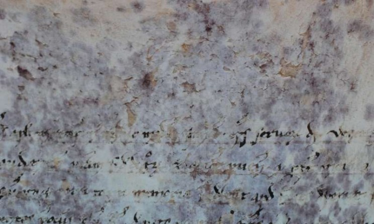 Scientists Finally Solve the Mystery of 800-Year-Old Vatican Scroll