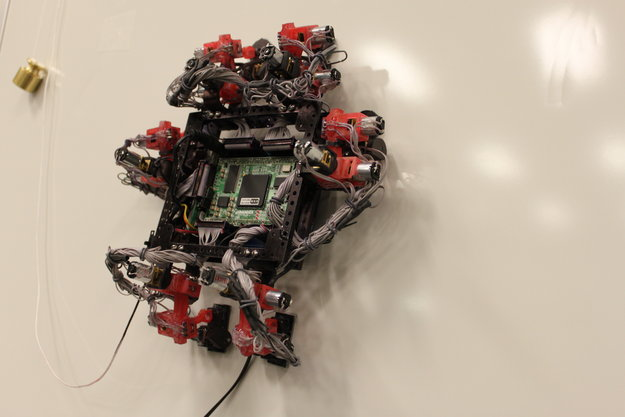 Abigaille_wall-crawler_robot_node_full_image
