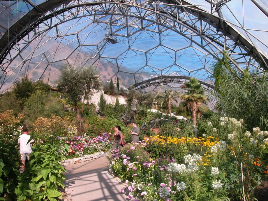 1137-Eden-Project-Flowers-Tourist Attractions