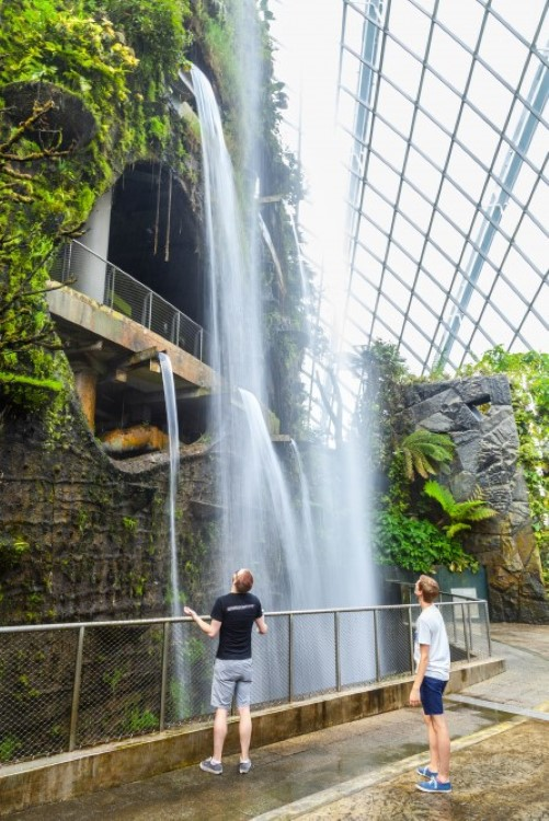 singapore-gardens-by-the-bay-supertree-cloud-forest-10