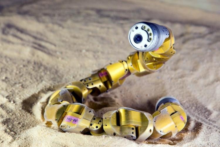 sidewinderrobot
