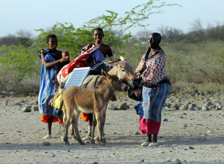 Maasai-Green-Energy-Africa-solar-2-537x393