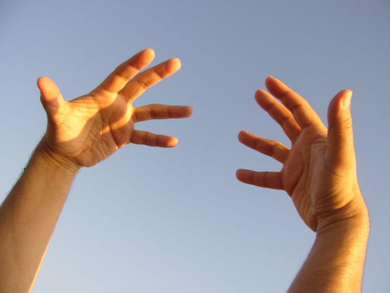 hands dexterity ability