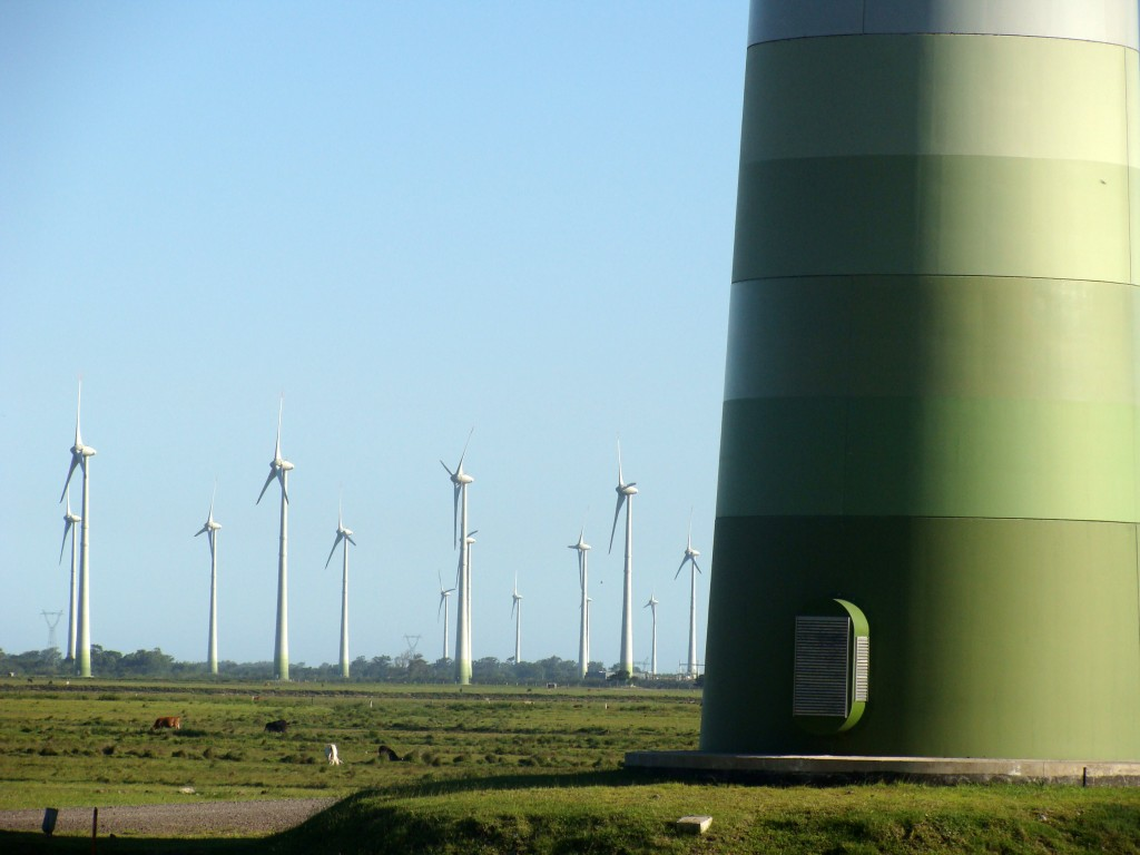 Wind farm Rio Grande do Sul Eduardo Fonseca Flickr