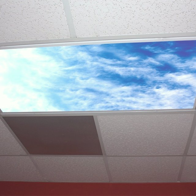 office skylight