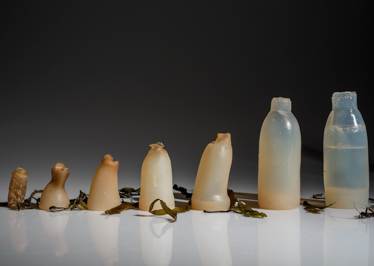 algae-water-bottle-by-ari-jonsson-designmarch_dezeen_ban bottles