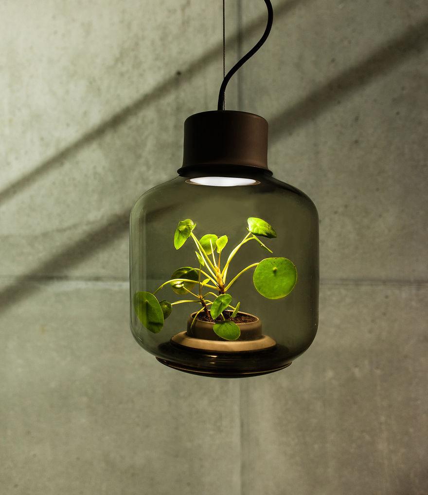 greenery-02