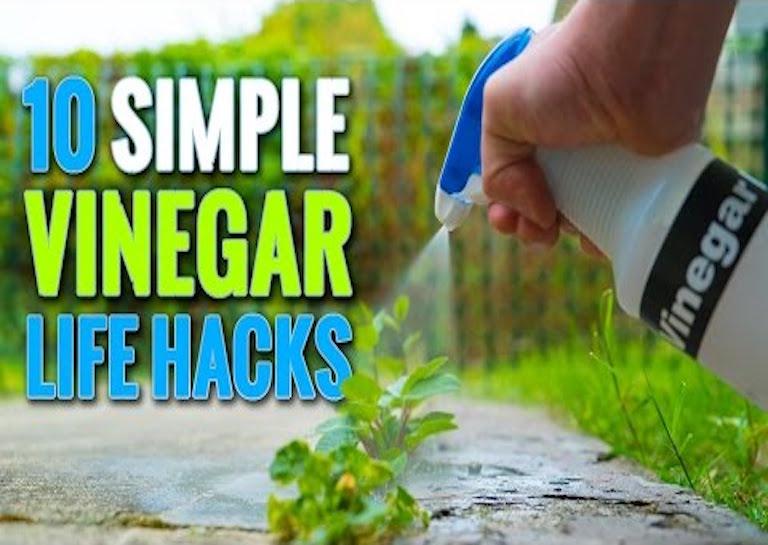 vinegar hacks