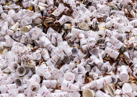 france-banned-to-use-plastic-3