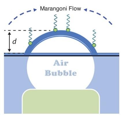 marangoni-flow