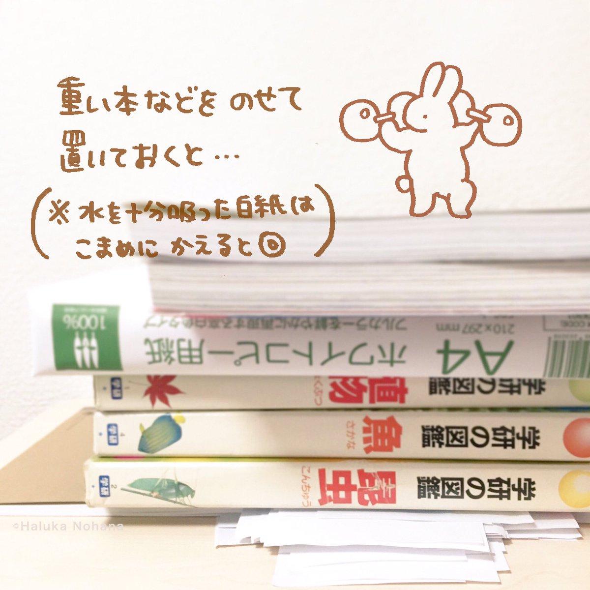haruka-nohana-diy-fix-wet-book-pages-3