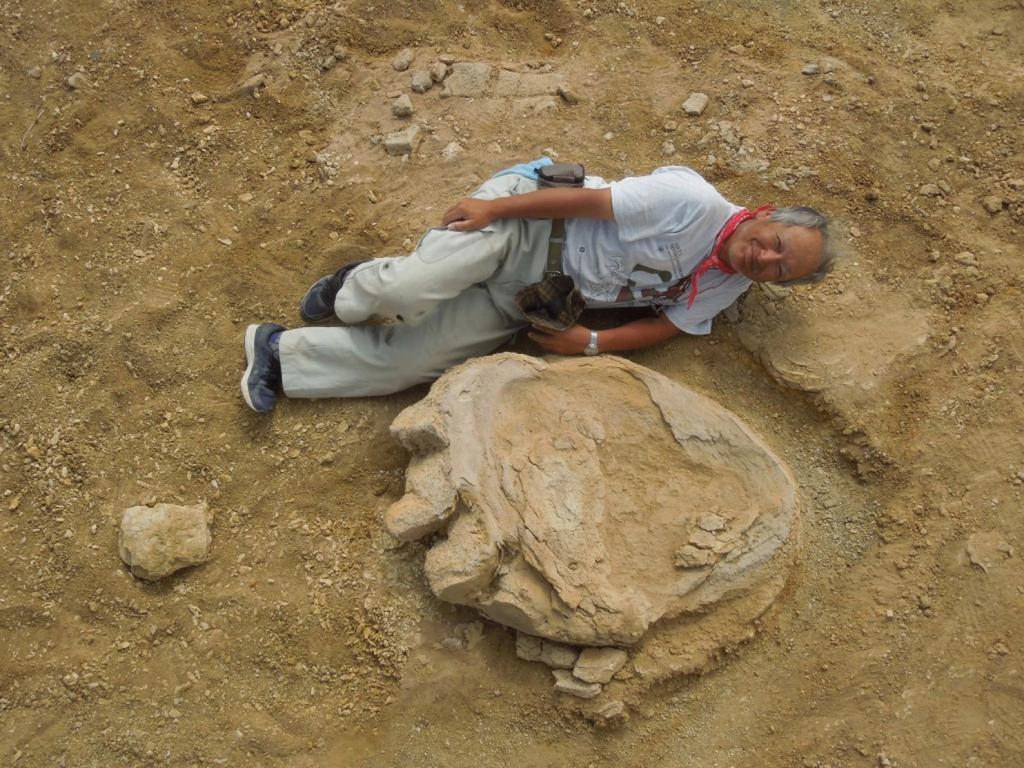 shinobu-ishigaki-dinosaur-footprint1