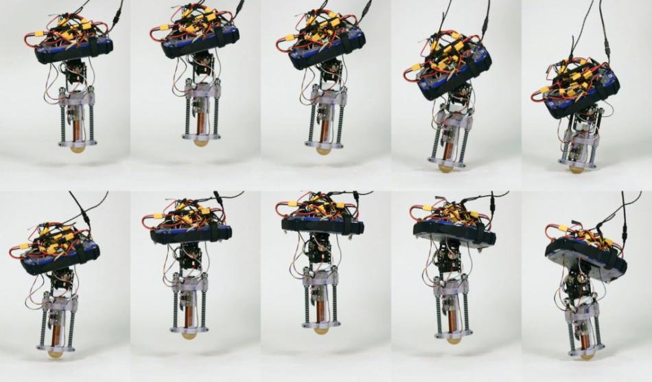 tiggerbot