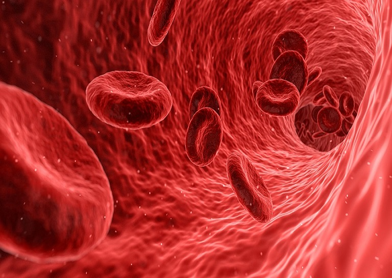 New Research Shows Mass Producing Artificial Blood Is Possible