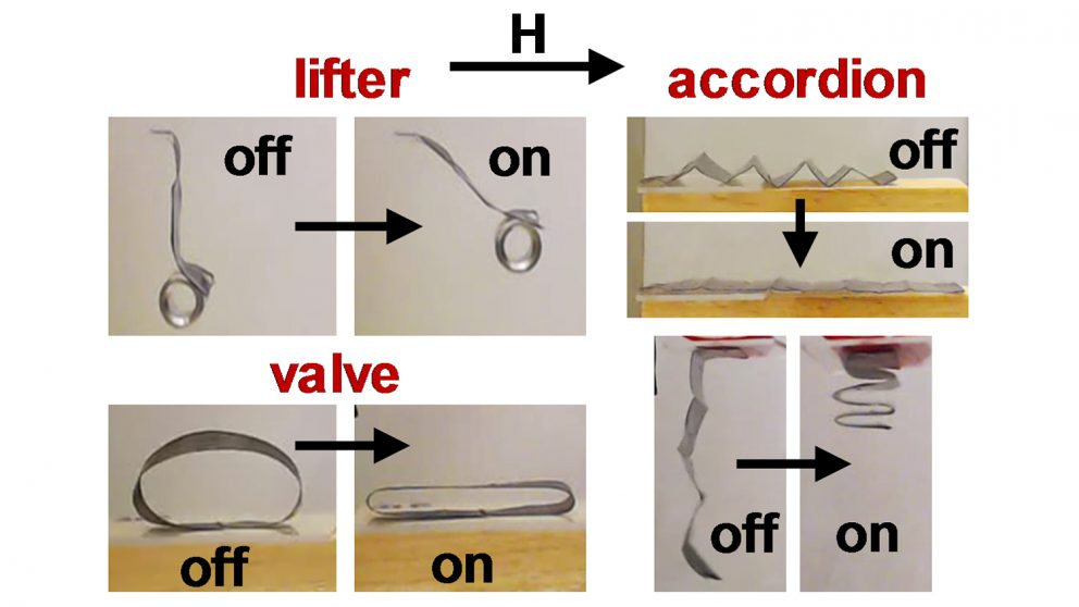 Researchers Use Magnetic Fields to Bring Soft Robots to Life