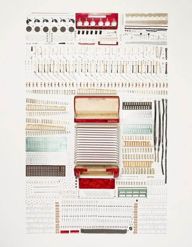 Disassembleld accordion instrument