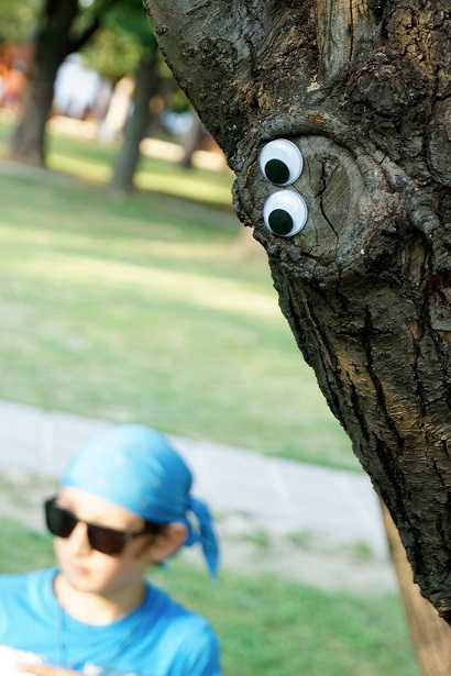 Tree trunk with googly eyes