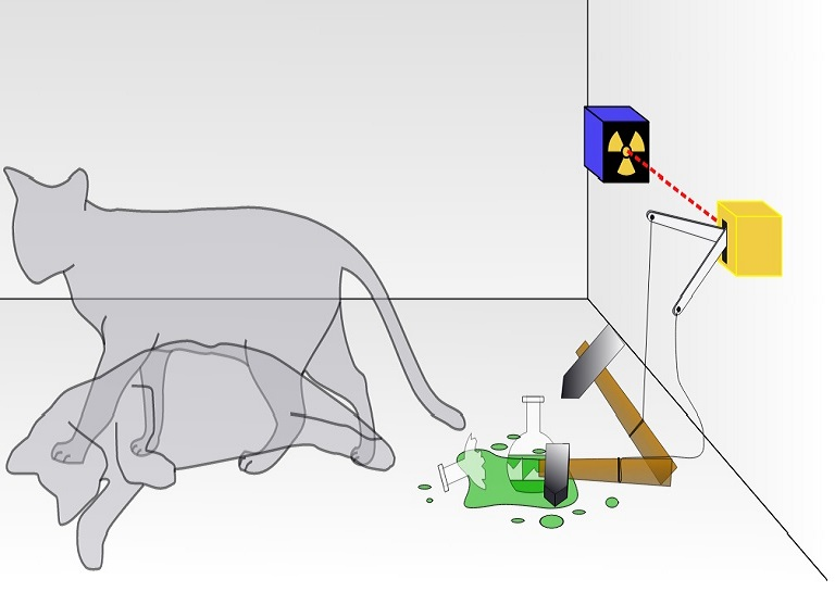 The quantum superposition of Schrödinger's cat
