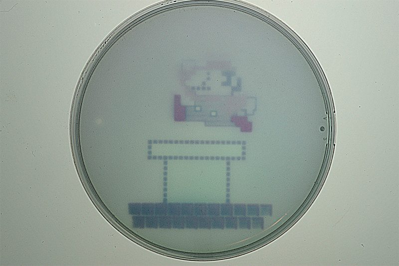 Researchers Engineer E. coli Bacteria to Produce Images of Super Mario