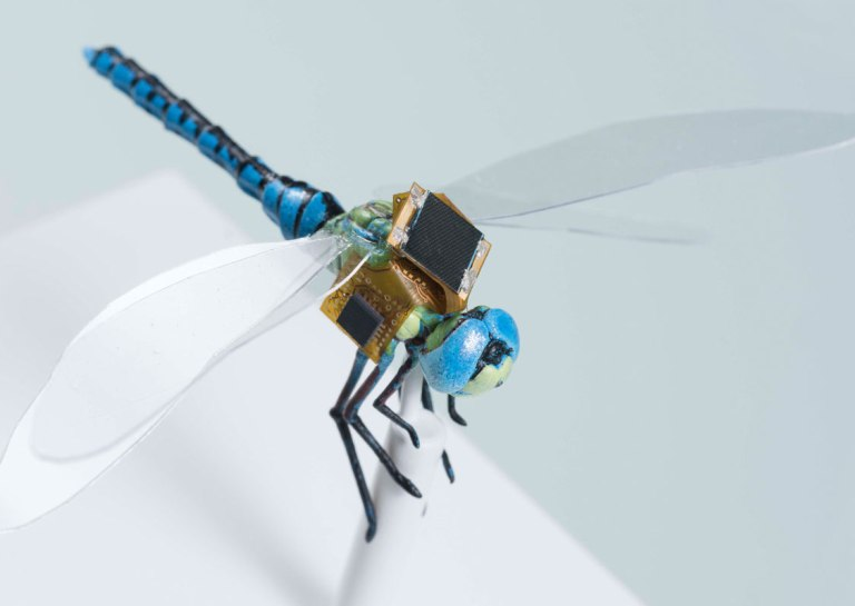Tiny Backpack Turns Dragonfly into World's Smallest Drone 'Cyborg'