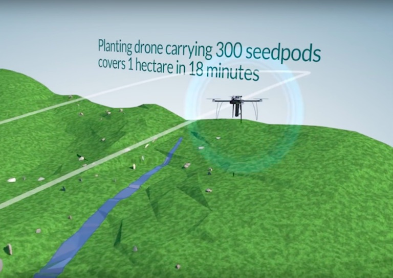 These Drones Help Fight Deforestation by Planting 100,000 Trees per Day