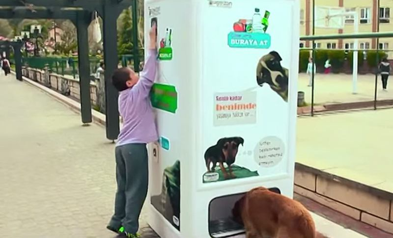 49+ Interesting Vending Machines Around the World