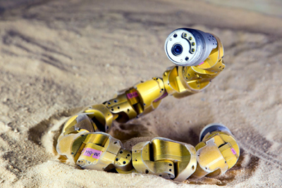 Researchers Upgrade Snake Robot into A Hexapod ''Snake Monster''
