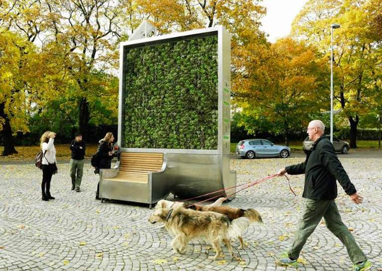 This Moss-Covered Air Purifier Can Do the Work of 275 Urban Trees