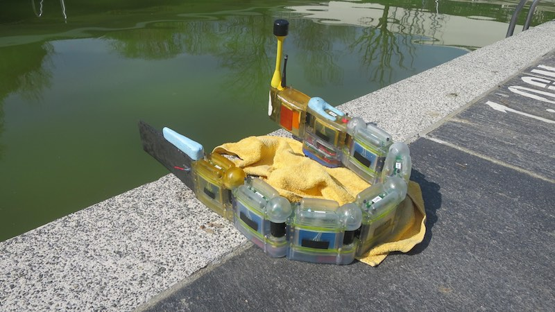 This Modular Robotic Eel Can Detect Sources of Water Pollution