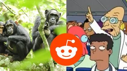 10 Of The Best Reddit AMAs