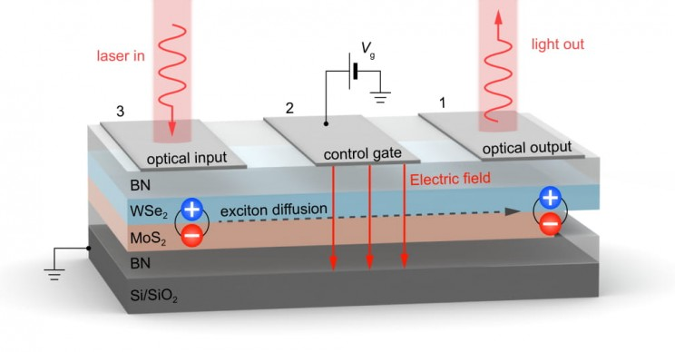 Excitons New Properties Discovered