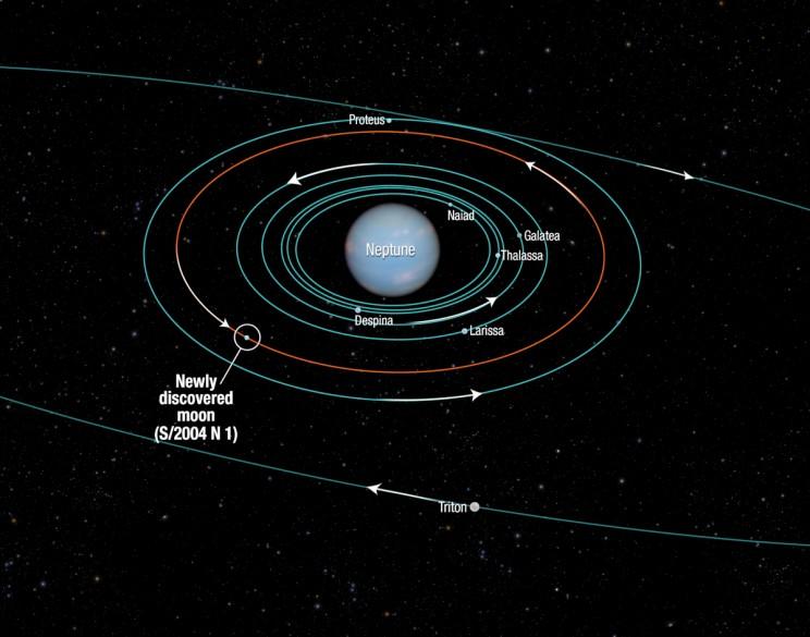 Origin of Neptune's Smallest Moon Hippocamp Revealed