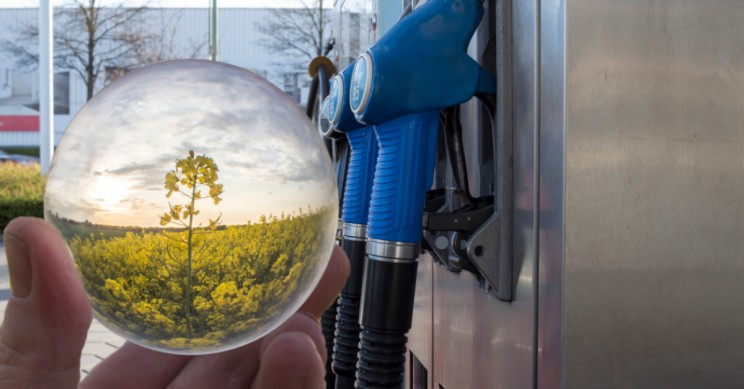 Plant-Based Jet Fuels Could be Cost Competitive with Fossil Fuels