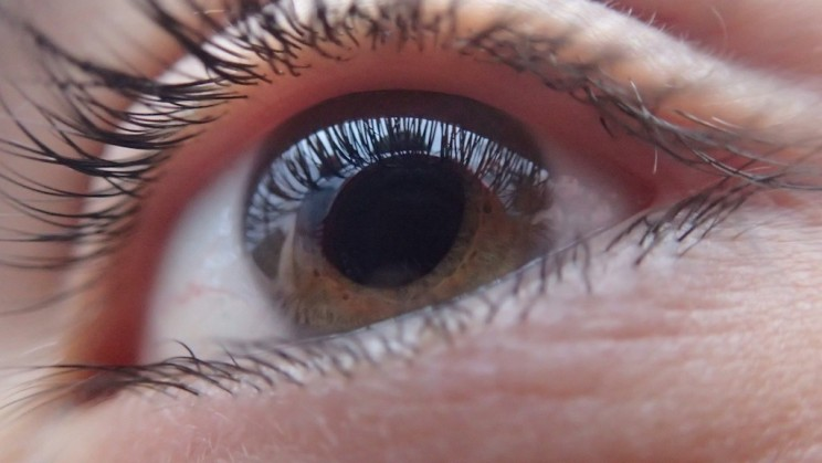 FDA-Approved Gene Therapy Treatment Could Restore Sight in Two Young Boys