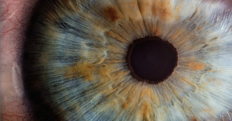 5 Medical Innovations That May Help Cure Blindness