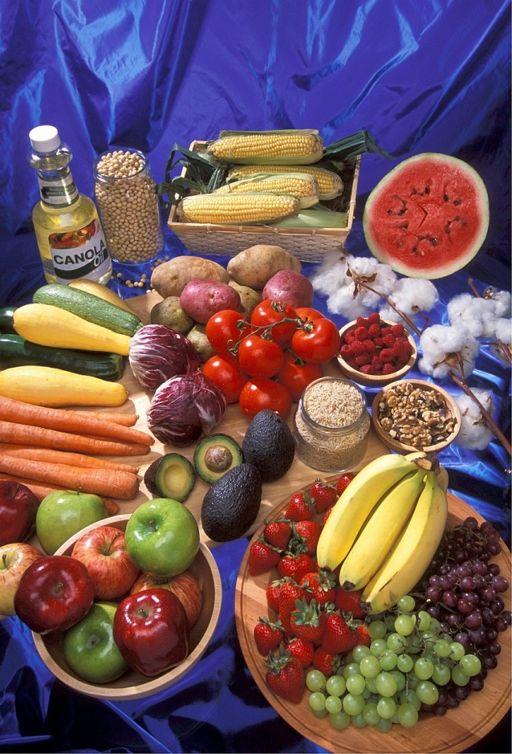 GMO myths nutrition