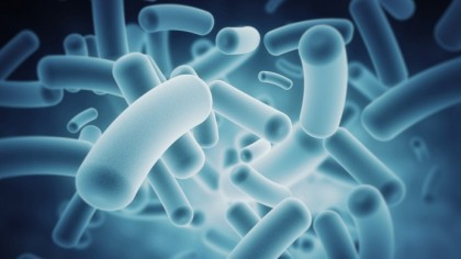 Childhood Gut Health Linked to Type 1 Diabetes