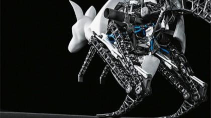 Robotic kangaroo based on the principles of nature