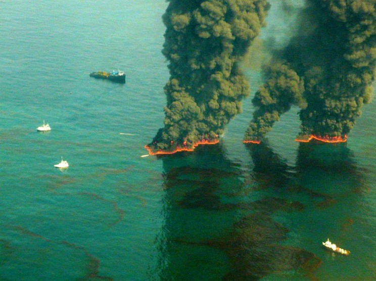 Oil-Eating Bacteria Cleansed Gulf of Mexico